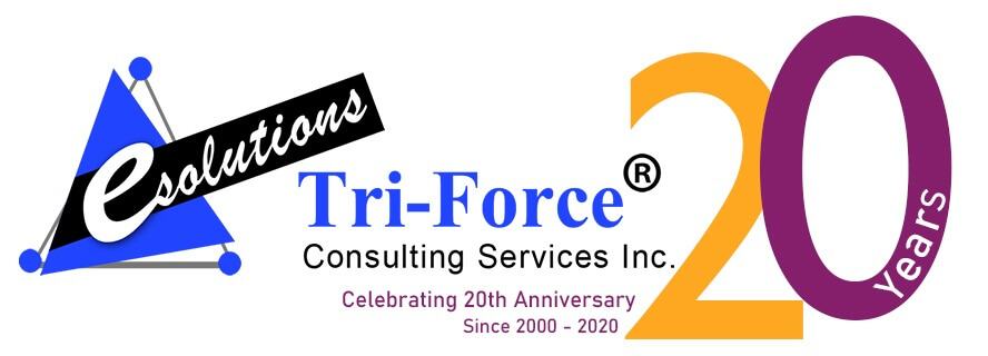 Tri-Force Consulting Service Inc